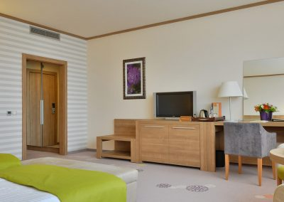 suite-hotel-sofia-studio-1