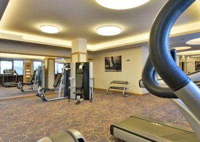 suite-hotel-sofia-fitness-2